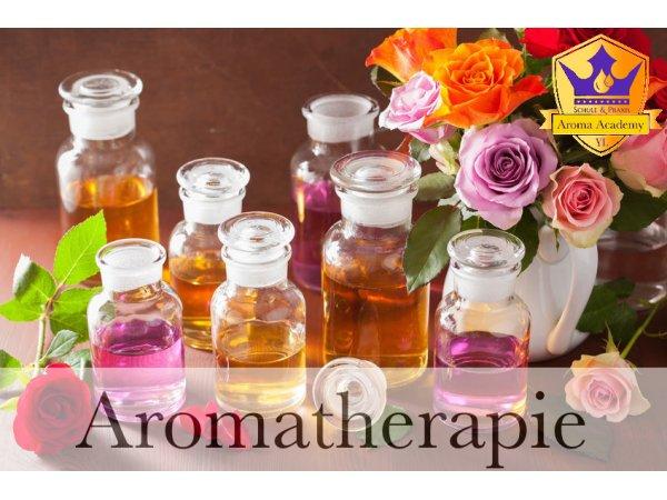 Tagesseminar - Aromatherapie