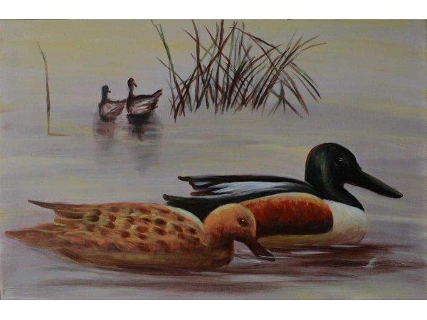Handgemalene Ölgemälde Ducks in Lake (ohne Rahmen)