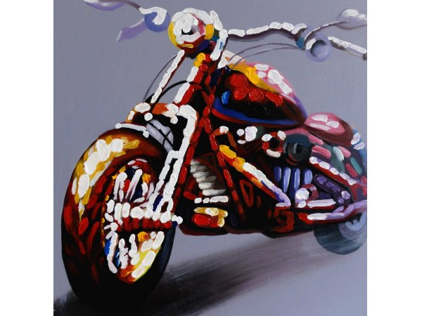 Hand-painted oil painting bike (without frame)