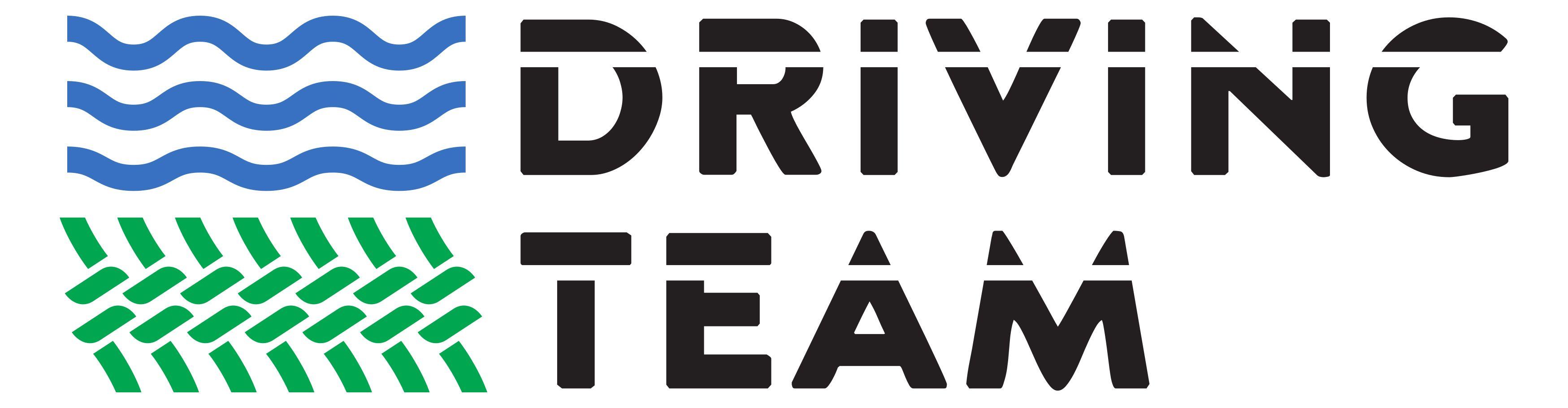 Driving Team Zurich GmbH